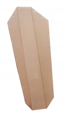 Splint - cardboard